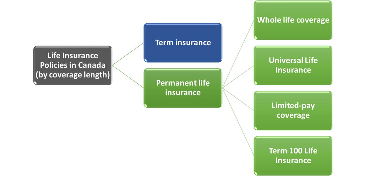Difference Between Term Whole And Universal Life Insurance ...