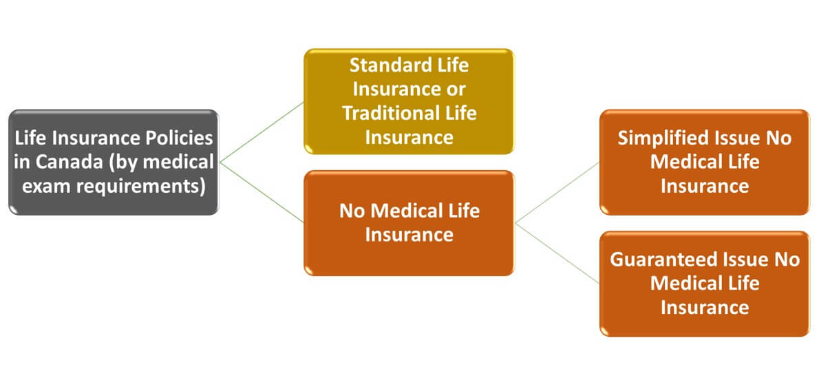 What Are the Different Types of Life Insurance Policies ...