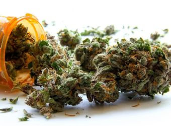 medical marijuana health insurance